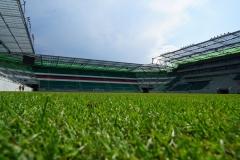 Weststadion_46